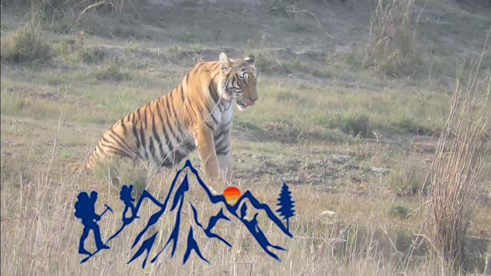 Bardia National Park Wildlife and Jungle Tour
